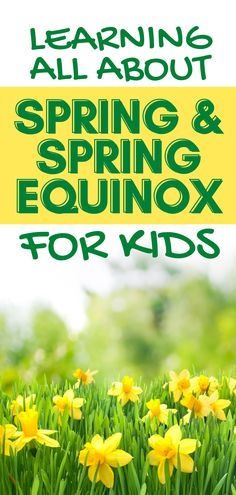 Spring equinox celebration for kids: learning all about spring season and fun spring crafts for kids. #Spring #lessons #kidsactivities Holiday Activities For Kids, Spring Crafts For Kids, Spring Activities, Teacher Lesson Plans, Free Lesson Plans, Preschool Lesson Plans, About Spring Season, What Is Spring, Moon Activities