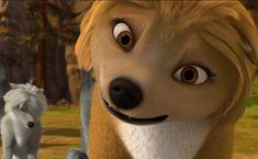 Alpha and Omega Movie Screencaps | beautiful Kate - kate-from-the-movie-alpha-and-omega Screencap