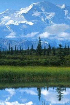Denali National Park, explore six million acres of wild land in Alaska.