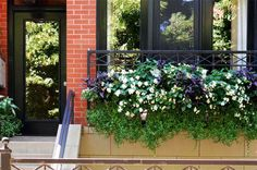 Seasonal Rotation, Summer | Topiarius Inc.