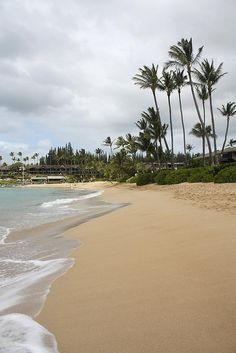 Beautiful Napili Beach where palms whisper as the sea laps the sand!  LOVE this beach!!!