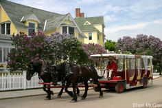 1000 Images About Somewhere In Time Mackinaw Island