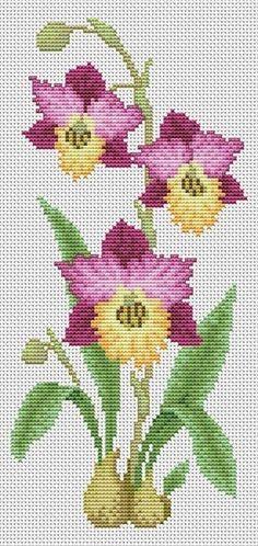 Orchidej cibulky Cross Stitch Heart, Beaded Cross Stitch, Simple Cross Stitch, Cross Stitch Alphabet, Cross Stitch Flowers, Cross Stitch Embroidery, Hand Embroidery, Easy Cross Stitch Patterns, Cross Stitch Designs