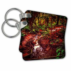 DYLAN SEIBOLD - PHOTOGRAPHY - FOREST STREAM - Key Chains - set of 2 Key Chains (kc_244529_1)