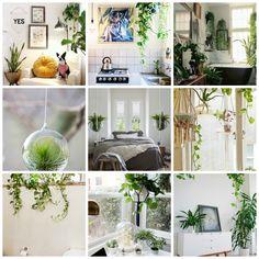 Plants Hangingplantsdecor. office design ideas. wall design ideas. patio design ideas. cake design ideas.
