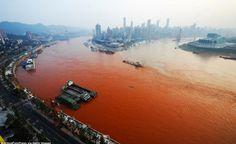 Azzurro sangue - Foto del Giorno - The Post Internazionale