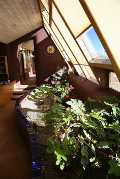 Earthship- I love the tile.. the sun... the wall color  the ceiling and floor :)