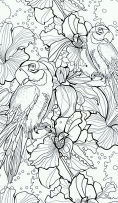 102c79293958f03b468a2aeff2355242jpg 11431969 pixels flower coloring - Free Colouring Printables