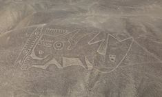 Scratching the surface: drones cast new light on mystery of Nazca Lines Monster Museum, Nazca Lines, Graffiti Tagging, 17th Century Art, Mythological Creatures, Sea Monsters, Luxor Egypt, British Library, Ancient Civilizations