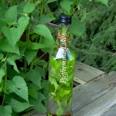 Peppermint liqueur - A refreshing and invigorating liqueur that tastes not only in summer (on ice). Homemade Alcohol, Homemade Liquor, Oat Flour Recipes, Oats Recipes, Homeade Desserts, Cocktail Drinks, Cocktails, Theives Oil, Peppermint Tea Benefits
