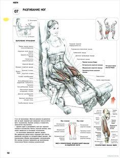 7. Разгибание ног