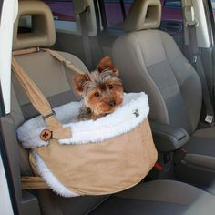 booster car seat for little pups
