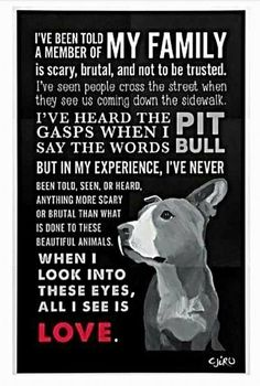 This is so true. Sad at the same time though. #PitBullQuotes