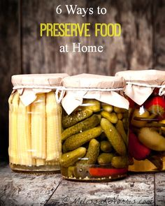 6 ways to preserve food at home. Love how this covers canning and dehydrating, but goes into some of the lesser known methods. Can't wait to...