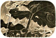 Plant Leaves, Illustration, Plants, Painting, Art, Art Background, Painting Art, Kunst, Paintings