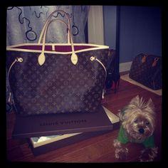 Chiara Ferragni for Louis Vuitton, with the Neverfull Damier Ebene New Handbags, Louis Vuitton Handbags, Fashion Handbags, Handbags Online, Only Fashion, Fashion Days, I Love Fashion, Fashion 2014, Just Style