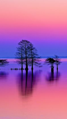 Customize your Galaxy with this high definition Sunset Bayou wallpaper from HD Phone Wallpapers! S4 Wallpaper, Sunset Wallpaper, Cute Wallpaper Backgrounds, Pretty Wallpapers, Beautiful Nature Pictures, Beautiful Nature Wallpaper, Amazing Nature, Beautiful Landscapes, Lac Rose