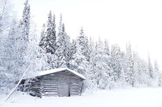 Christmas day | Winter wonderland | Lapland, North Finland