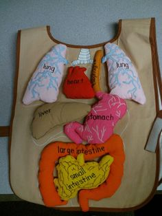 Teach the human organ system early to kids and let them know what each organ does and what foods are good for them.