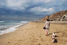 Huntington Dog Beach. Beautiful, clean, relaxing.