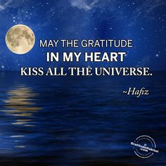 When my heart can't take the sadness, I turn to gratitude...