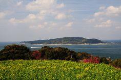 Download Photo - Nokonoshima Island Park - FUKUOKA SHOWCASE