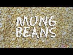 What Are Mung Beans? / Mung Bean Dal Recipe