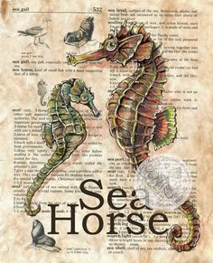 Sea Horse Mixed Media Drawing on Children's Dictionary Page - flying shoes art studio