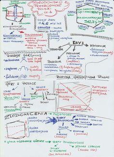 Study Tips for the Biology Major Celine, Biology Major, Sketch Notes, Gaines, College Hacks, School Notes, Study Tips, Bullet Journal, Organization