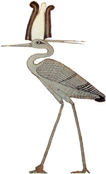 🌍The Bennu bird was a large imaginary bird resembling a heron. The bird may be modeled on the gray heron (Ardea cinera) or the larger Goliath heron (Ardea goliath) that lives on the coast of the Red Sea. Egyptian Mythology, Egyptian Art, Mythological Creatures, Mythical Creatures, Mythical Birds, Phoenix Bird, Virtual Art, Ancient Egypt, Art Gallery