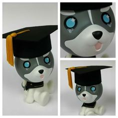 Aome Husky graduate  Order :huskyx3@gmail.com
