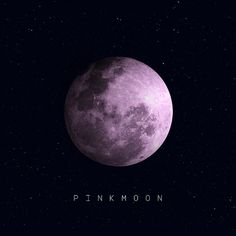 personal project album artwork  Pinkmoon - Hooverfield  후버필드 핑크문 앨범자켓디자인 외주