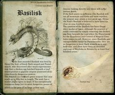 "Next page: Text belongs to JK Rowling, images found on google. (if you own this image I will take it down if you don't want it up, if you want it up I'll credit you) ""Fantastic Beasts and Where to ..."