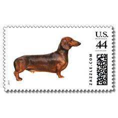 Dachshund Postage Stamp!!!!  I want to write a letter now so I can use one. lol