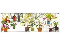 Lara Harwood, India Sketchbook 2009/plants