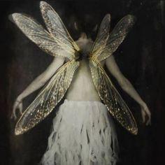 Images Esthétiques, Forest Fairy, Pics Art, Art Plastique, Belle Photo, Faeries, Aesthetic Pictures, Art Inspo, Fantasy Art