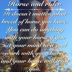 Horse quotes on Pinterest | Equestrian, Horses and Equestrian Problems