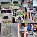 Indoor Aquaponic Food Production System Tour