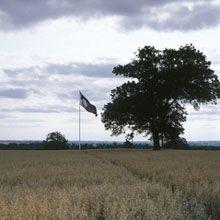 Battle of Bosworth Field | English Heritage