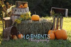 Moements Photography Fall Mini Session Set up 2014 #fall #moementsphotography #minisession