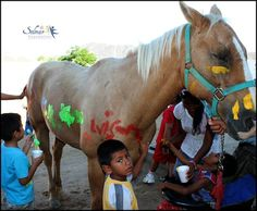 The Solmar Foundation enables disabled children of the Los Cabos community to take part in equine therapy. This sensorial activity is very helpful for the children and the paintings do not harm the horse!