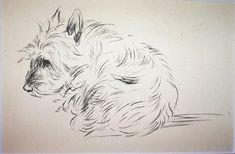 New Mike Sibley long haired teckel chien race Carte de vœux anniversaire merci
