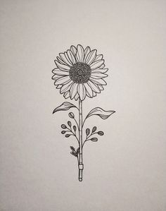 I have a sunflower tattoo on my arm mine has four flowers on my wrist it has my favorite quote. (STAY GOLD) I have a sunflower tattoo on my arm mine has four flowers on my wrist it has my favorite quote. Sunflower Tattoo Sleeve, Sunflower Tattoo Shoulder, Sunflower Tattoo Small, Sunflower Drawing, Sunflower Tattoos, Sunflower Tattoo Design, Drawing Flowers, Tattoo Flowers, Sunflower Mandala Tattoo