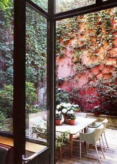 courtyard with high colorful walls and cascading foliage