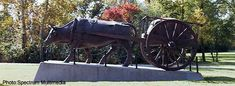 Winnipeg Visitor Tips Trans Canada Highway, Red River, The Province, Day Tours, Cart, Sculpture, Tips, Covered Wagon, Karting