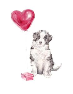 Australian Shepherd Puppy Love Gift with Balloon Watercolor Limited Edition Print Birthday Greetings, Birthday Wishes, Birthday Memes, Birthday Celebration, Cute Little Puppies, Puppy Love, Special Love Quotes, Happy Birthday Balloons, Happy B Day