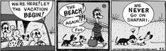 MUTTS Summer #summer #vacation #relax #family #Frank #Ozzie #Millie #Earl #Mooch #beach #fun #comic
