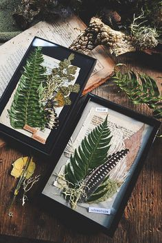 "Simple pressed foliage gifts or memory frames. Pinner said: ""Got the frames for about 4 bucks and just used old book pages, materials and other trinkets to arrange and fill up space"" Art Floral, Deco Floral, Art Projects, Projects To Try, Diy And Crafts, Arts And Crafts, Geek Crafts, Deco Nature, Art Nature"