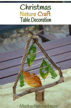 Christmas Nature Craft Decor