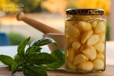 Country Life Experiment: How To Preserve Garlic